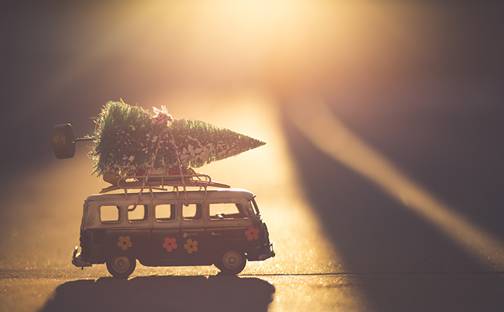 Christmas-Tree_Last-Minute-Shopping_December2018